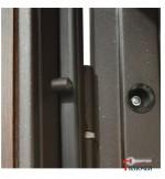 Дверь АРКТИКА, беленый дуб