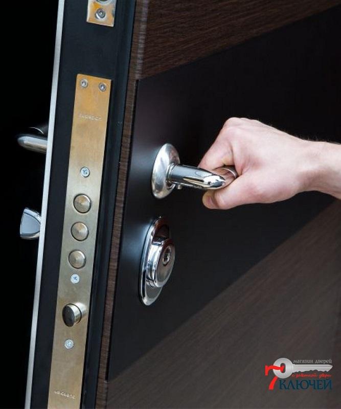 Дверь АРМА с панелями с двух сторон